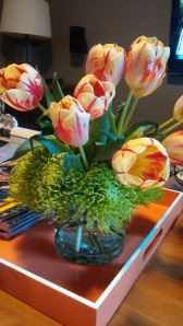 spring parrot tulips in yellow and cream