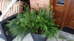 more greenery in outdoor arrangement