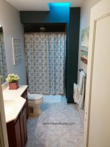 bathroom blog