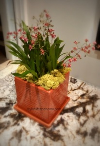 orchid flower arrangement contemporary reindeer moss marsala