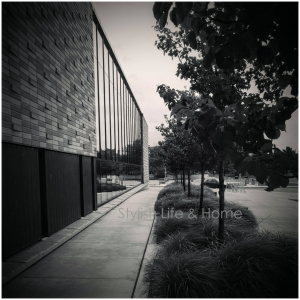 modern photography contemporary black and white landscape architecture design style
